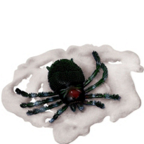 Big Spider & Web