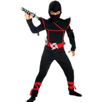 Sly Ninja Costume Boys